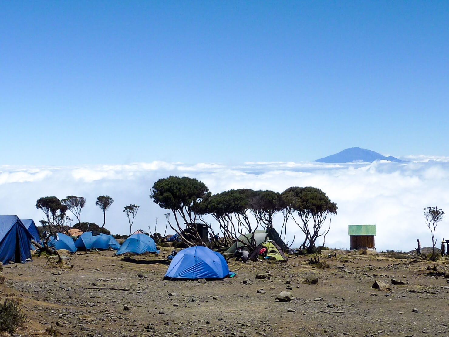 9 Days Kilimanjaro Climb Northern Circuit Route