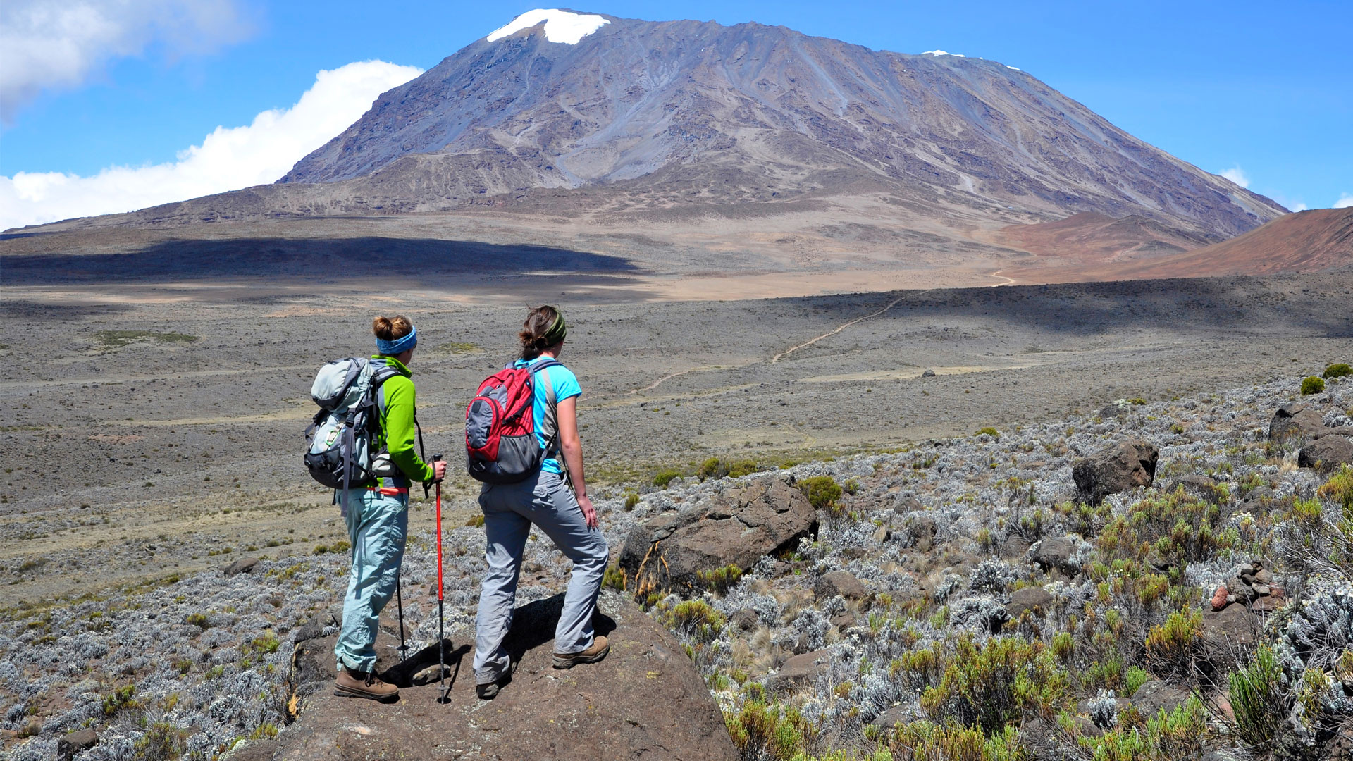 Mt. Kilimanjaro Day Hike